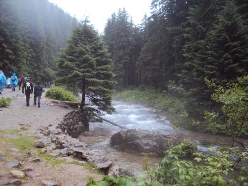 Deszcz pada potok płynie nieprzemakalni maszerują