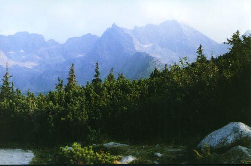 Dolina Gąsiennicowa