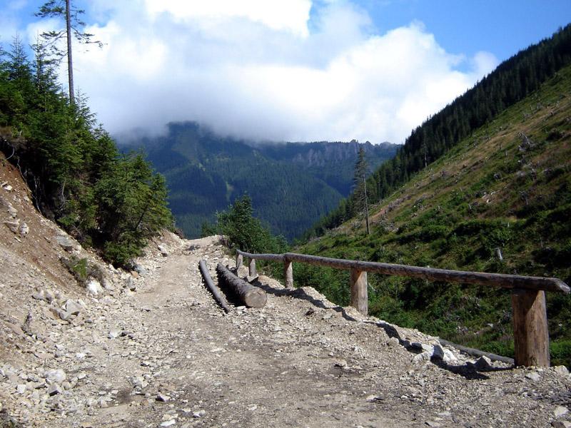 Dolina Jarząbcza