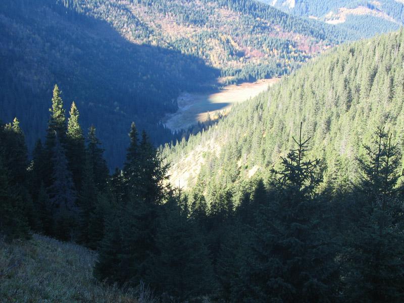 Dolina Małej Łąki