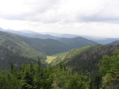Dolina Małej Łąki ze szlaku na Giewont