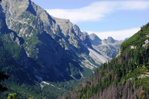 Dolina Staroleśna z Tatrzańskiej Magistrali