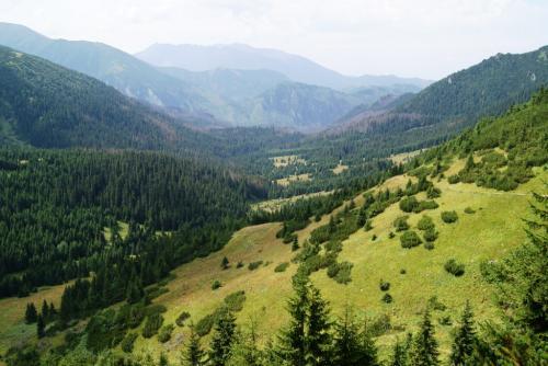 Dolina Zadnich Koperszadów w Tatrach Bielskich