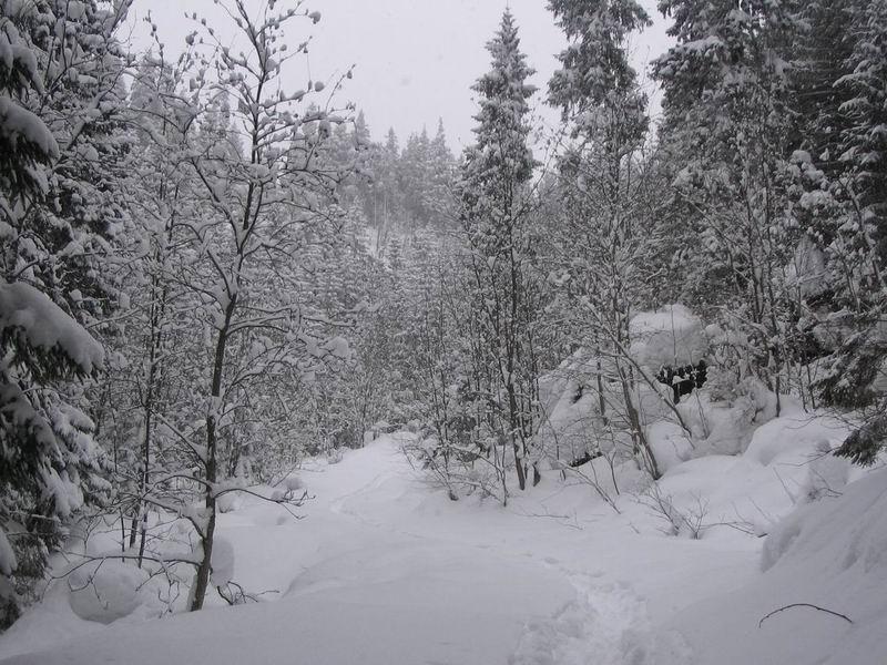 Droga do Doliny Małej Łąki