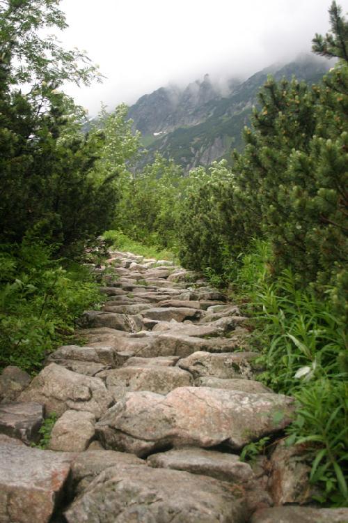 Droga do Pięciu Stawów