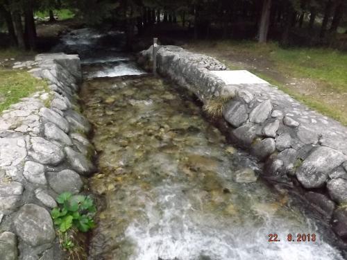Foluszowy Potok w Kuźnicach