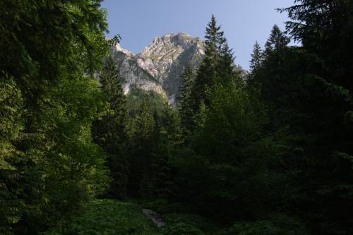Giewont widok z Doliny Strążyskiej