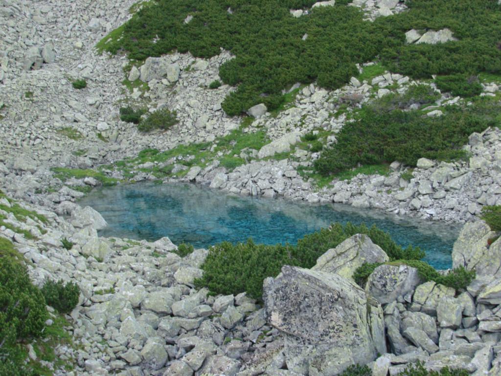 Niebieski stawek w dolinie Buczynowej