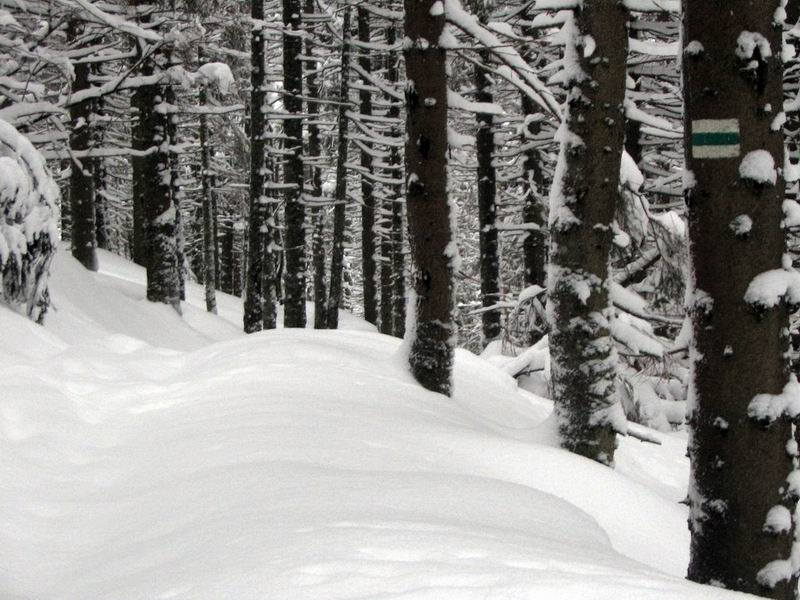 Nieprzetarty szlak do Doliny Pięciu Stawów