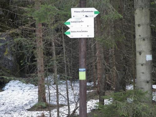 Oznaczenia szlaków