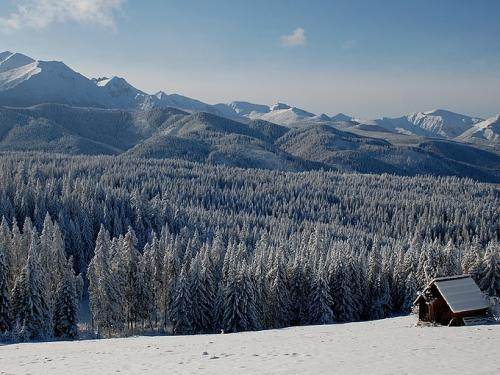 Piękny  widok Tatr
