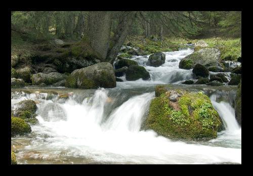 Potok Olczyski