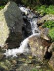 Potok w Dolinie Litworowej