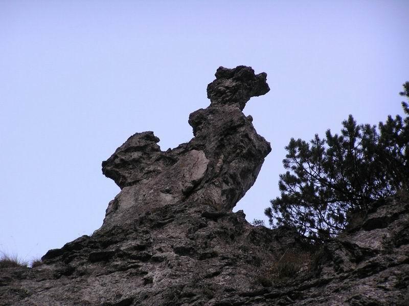 Potwór w locie skamieniały