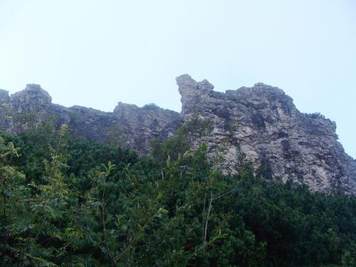 Sarnia Skała - widok z Doliny Białego Potoka