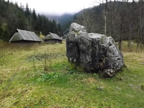 Sfinks na Polanie Strążyskiej