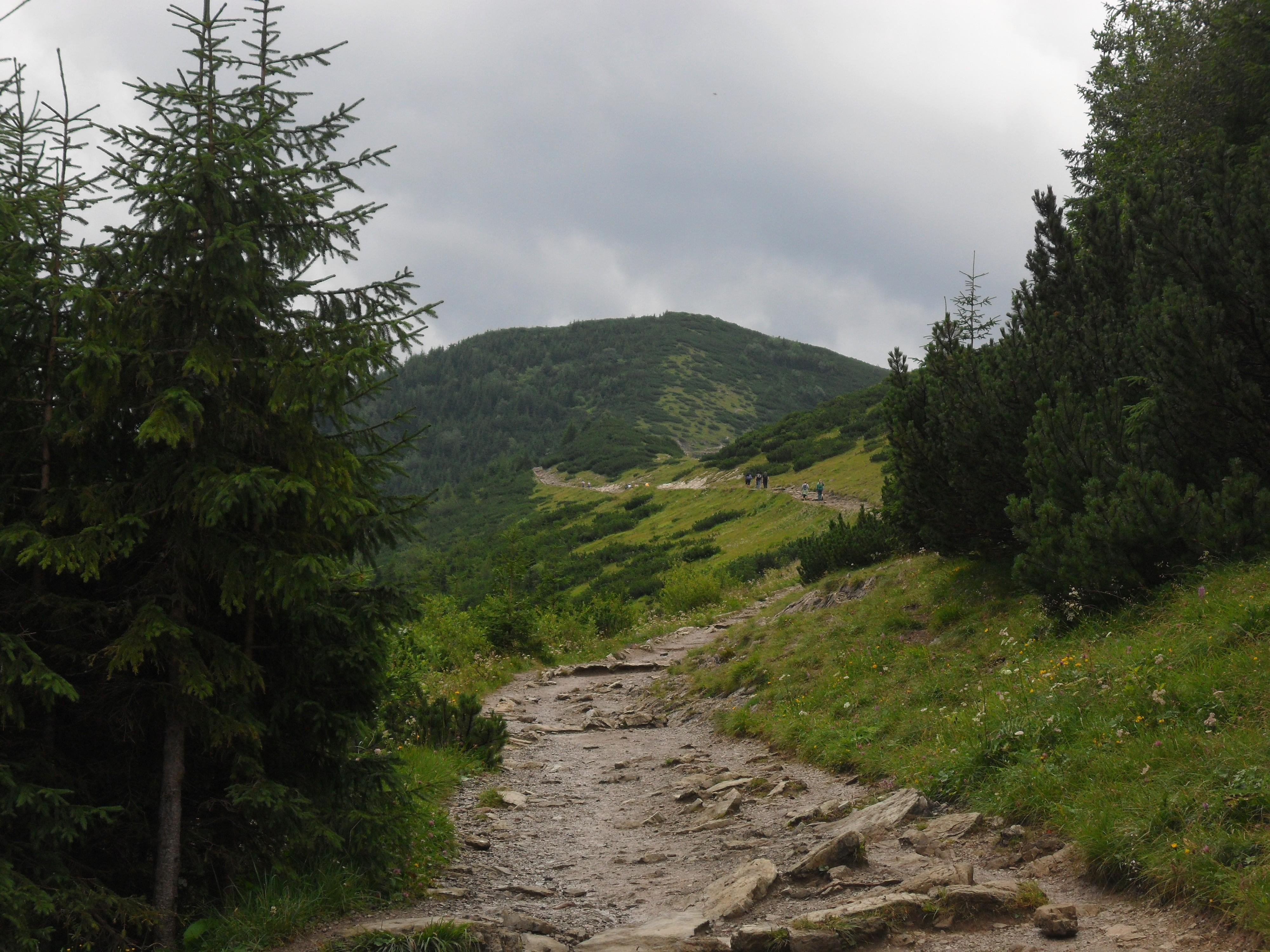 Skupniów Upłaz - Droga na Halę Gąsienicową przez Boczań