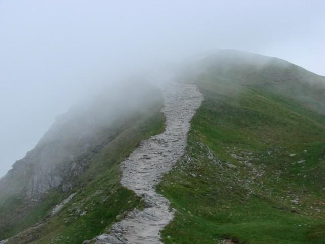 Szlak na Świnicę kierunek na Zawrat