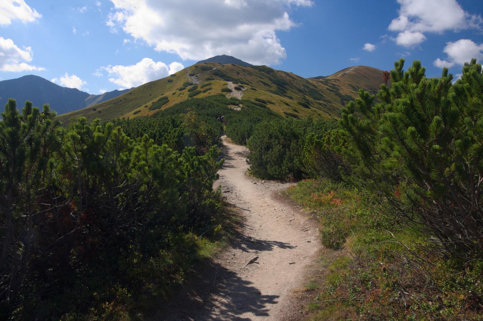 Tatry Zachodnie szlak na Rakoń, Wołowiec