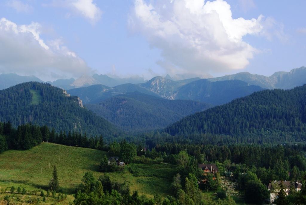 Tatry z Antałówki