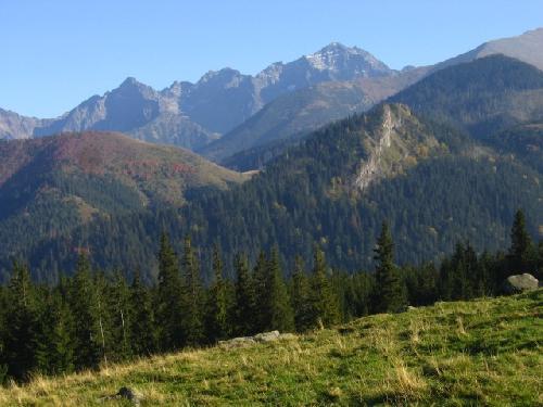 Widok na Tatry z Rusinowej Polany