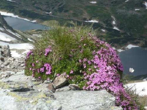 Wiosna na Szpiglasowej Przełęczy