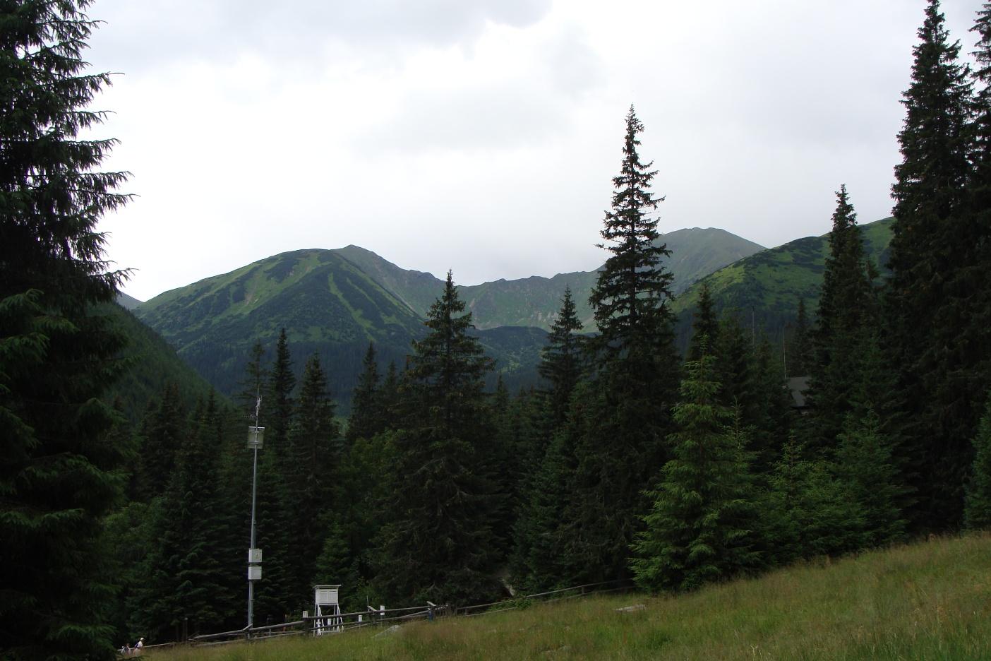 Wyżnia Chochołowska Dolina