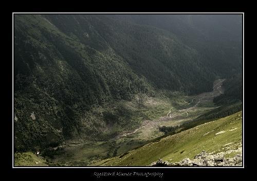 Żarska Dolina