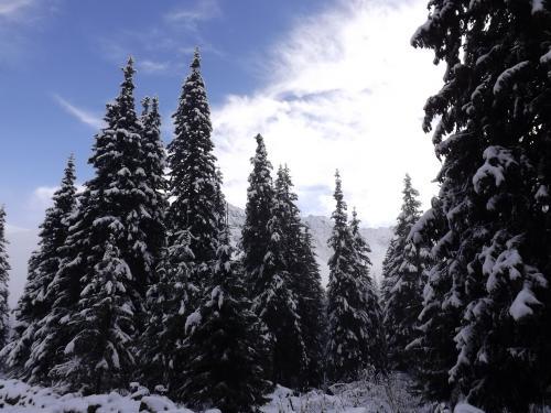 Zimowa sceneria przed Murowańcem